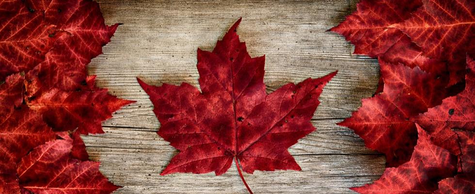 kanadische botschaft visum deutschland